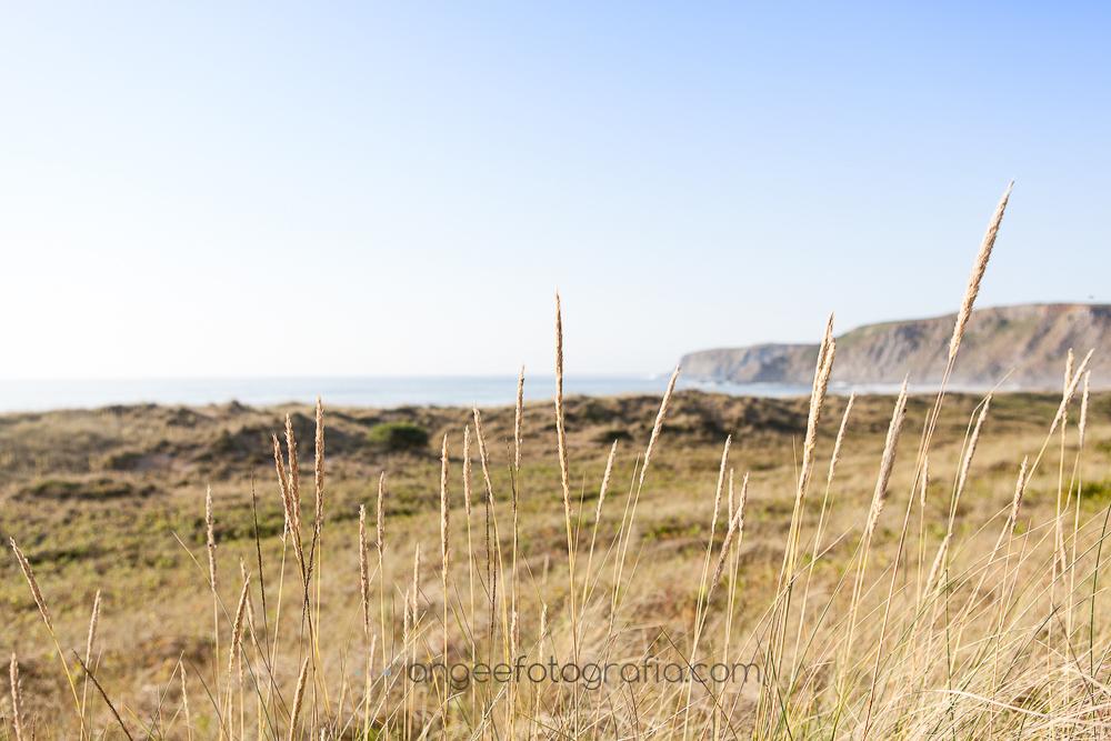 Playa de Xago en Asturias