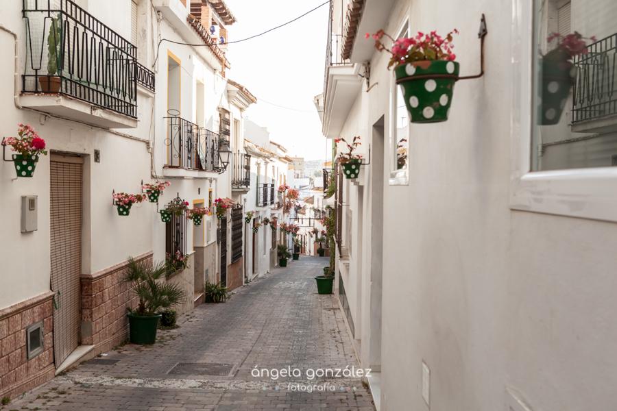 Calle cn macetas y flores en el casco atiguo de estepona, Fotógrafo en Malaga